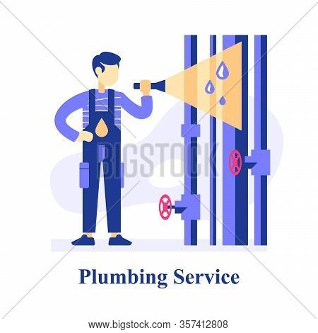 Plumber Inspecting Pipes, Finding Problem, Repair Leaking Tubes, Central Waterline, Service Man Hold