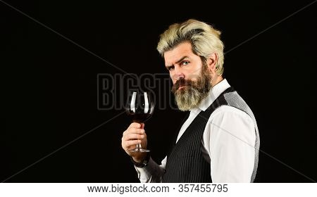 Male Sommelier Appreciating Drink. Glass Of Red Wine. Bartender At Wine Cellar With Exquisite Drink.