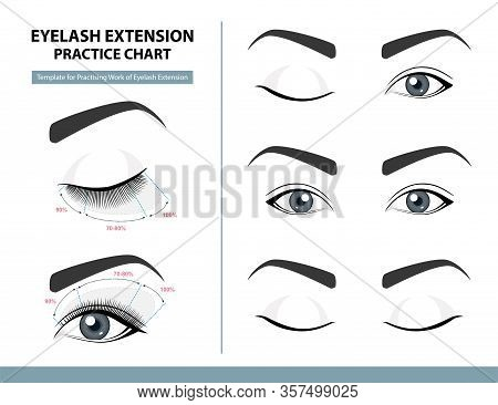 Training Poster, Practice Chart. Density Of Eyelash Extension For Great Look. Eyelash Extension Guid