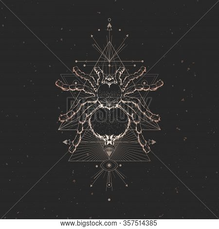 Vector Illustration With Hand Drawn Spider And Sacred Geometric Symbol On Black Vintage Background.