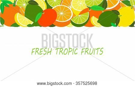 Vector Fresh Tropical Fruits Template Suitable For Banners, Magazines, Websites, Restaurants And Men