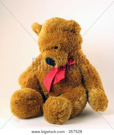 Sad And Somber Teddy Bear