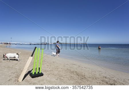 An Australian Beach Scene With Cricket Wickets In The Foreground.