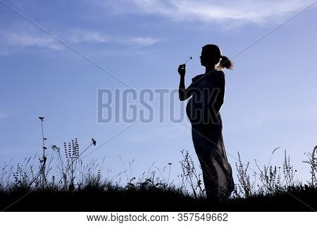 A Nice Silhouette Of  Pregnant Woman On A Nature