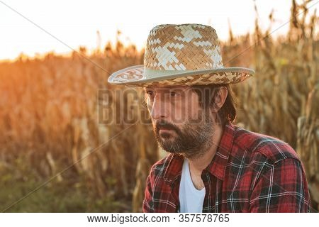 Thoughtful Concerned Corn Farmer Agronomist Posing In Maize Crop Field, Worried About The Yield From