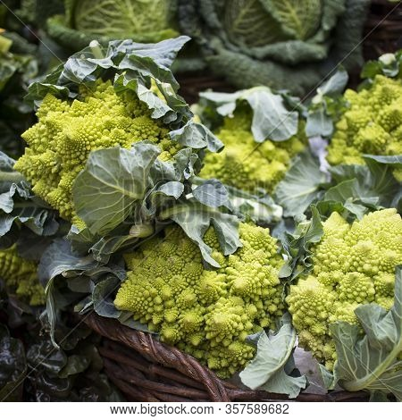 Romanesco Broccoli Cabbage For Sale At A Farmers Market. Square Frame Format