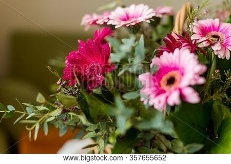 Pink Gerbera Flowers On White Wood Vintage Background. Happy Mothers Day Design. Fresh Natural Flowe