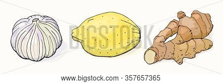 Folk Remedy For Colds. Garlic, Ginger And Lemon Set. Isolated Objects On White Background. Vector Il