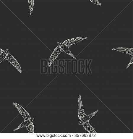 Seamless Vector Pattern With Flying Swallows, Swifts. Doodle Dark Background With Birds