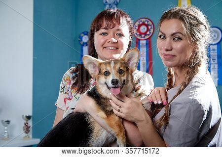 Professional Vet Funny Female Doctor And Woman Who Is Owner Of Small Dog Smilling And Posing Togethe