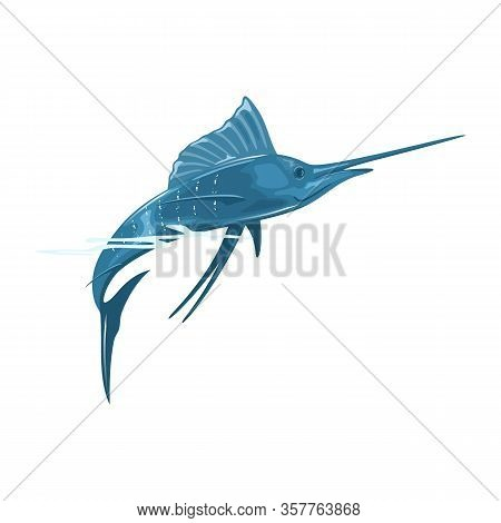 Swordfish Or Broadbill Is Large, Predatory Fish With Elongated, Round-bodied And Long, Flat, Pointed