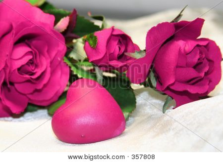Rosa valentine