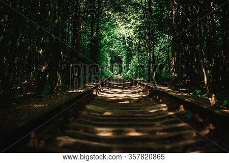 Klevans Railway Attraction - Tunel Of Love With Green Walls In Rivne Oblast, Ukraine
