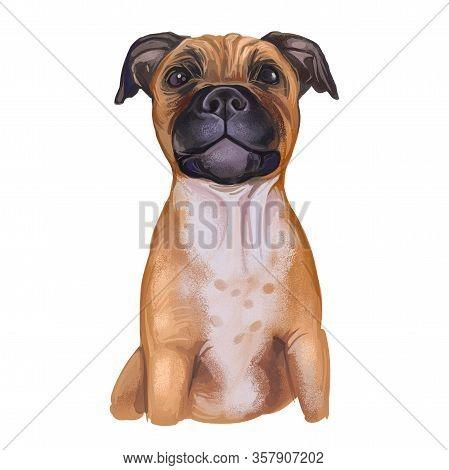 Staffordshire Bull Terrier Digital Art Illustration Of Cute Canine Animal Of Tan Color. Muscular Dog