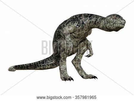 3D Rendering Dinosaur Tyrannosaurus Hatchling On White