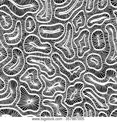 Black And White Lace Pattern. Complex Hand-drawn Ornament In Doodle Style.