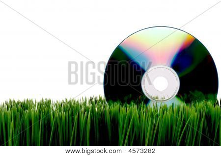 Compact Computer Data Disk On Green Grass