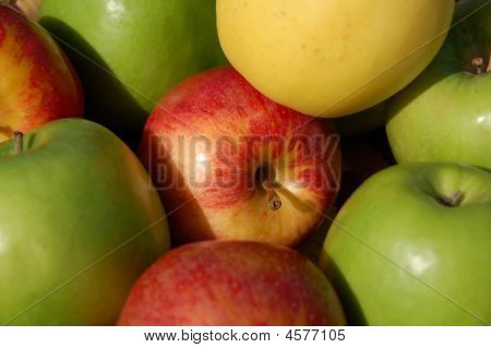 Apples Assorted Colours