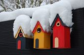 Bird box covered with snow in garden England poster