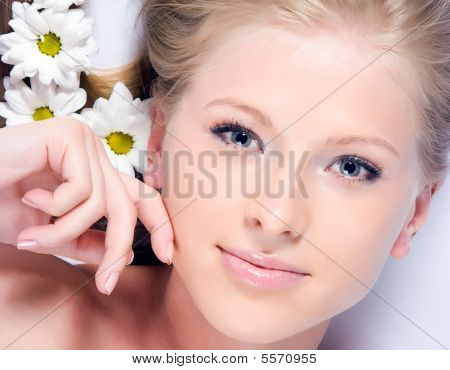 Camomile Flowers