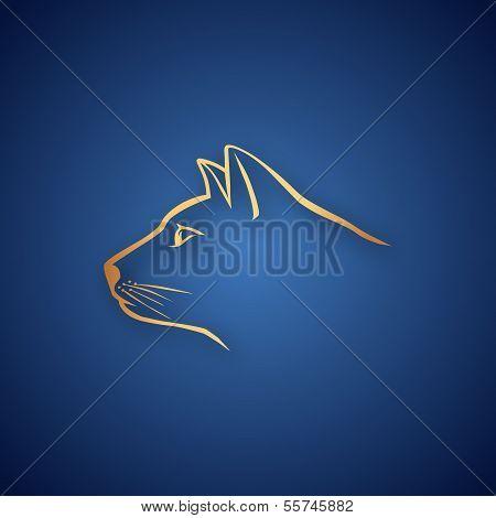 Golden cat over blue