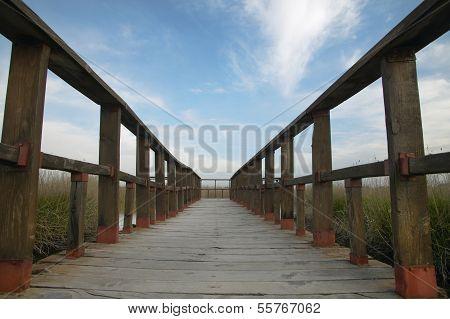 Footbridge Walkway. Wetland Landscape. Tablas De Daimiel. Ciudad Real. Spain.