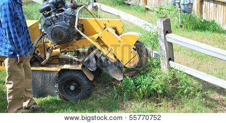 Tree stump machine.