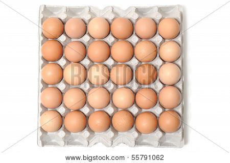 5 X 6 Egg Box And Eggs