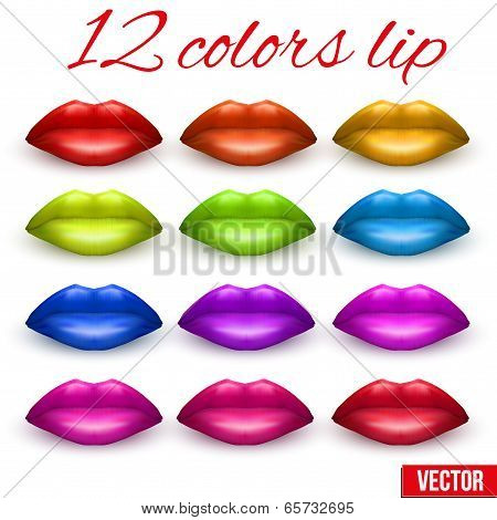Shades Of Beautiful Luscious Multicolor Lips. Vector Illustration.