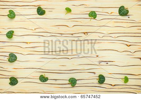 Abstract Leaves Ceropegia Woodii On Wood Texture (ice Tree)