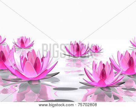 3d abstract lotus