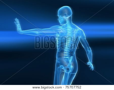 immune defense illustration