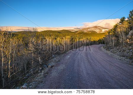 Road 116 To Rainbow Lakes Campground  With Kiowa Peak In The Back Sunrise