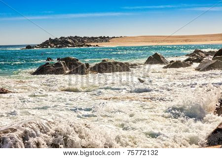Sea Of Cortez