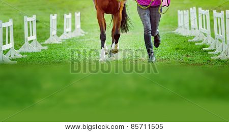 Man And Horse Together