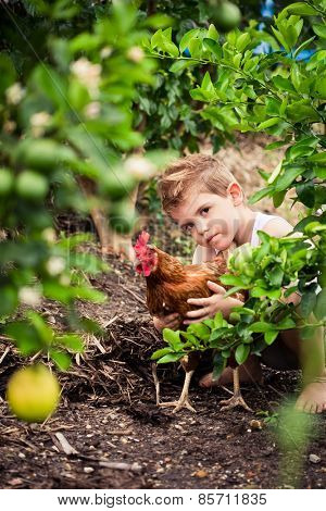 Cute little boy playing in the garden with his bet chicken.