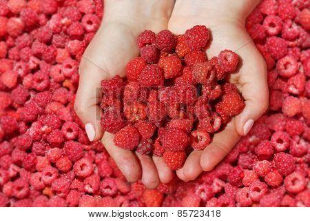 Raspberry In Palm.