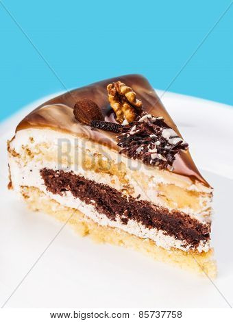 Piece Of Cake With A Chocolate Stratum
