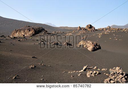 Desert Like