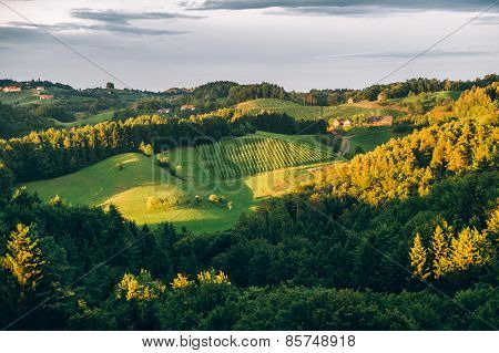Summer Landscape in Southern Styria