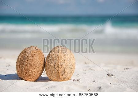 Couple Of Opened Coconuts. Caribbean Paradise. Tulum, Mexico. Copy Space.