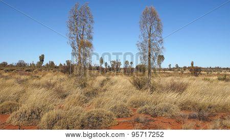 Outback, Australia