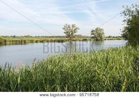 Wide Creek In A Dutch National Park