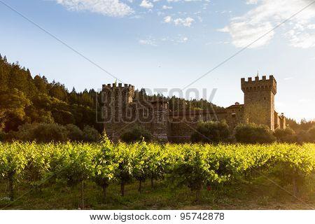 Wine Castle In Napa Valley
