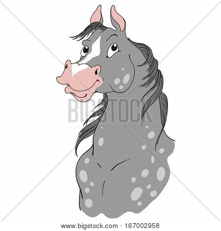 Horse cartoon character. Dapple gray suit. Horse head isolated on a white background. Vector.