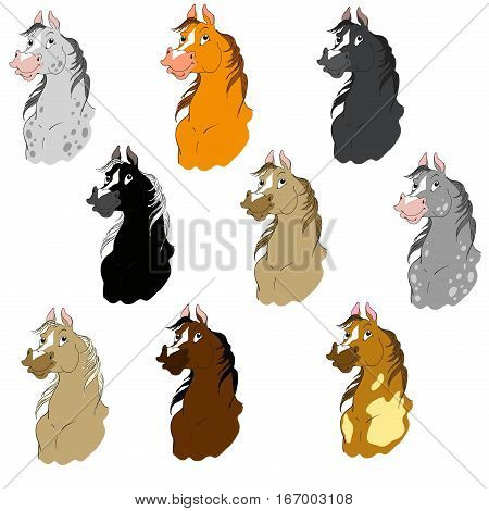 Collection of cartoon horses. Suits horses. Horse head vector isolated on white background.
