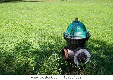Fire hydrant on the green grass field