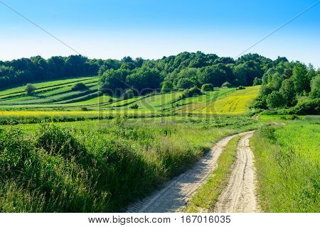 Green rolling hills and agriculture landscape - Roztocze region in Poland