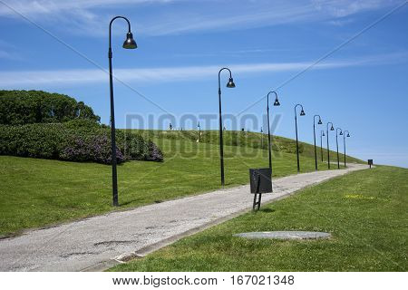 Photo of a way with streetlight, green grass and sunlight