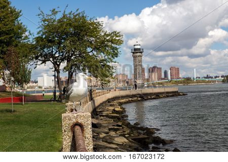 A Park with lighthouse in Roosevelt island